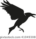 Flying crow 41049308