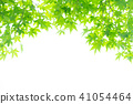 Green 41054464