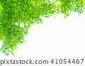 Green 41054467
