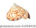 水彩醬 - 索拉6 41058439