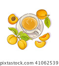 apricot, illustration, vector 41062539