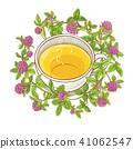 clover, illustration, tea 41062547