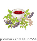 elderberry, berry, tea 41062556