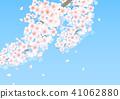 벚꽃 나무 41062880