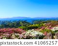 진달래, 철쭉, 봄 41065257