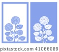 blue hydrangea vector 41066089