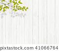 背景 - 植物 - 白牆 41066764