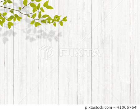 배경 - 식물 - 시라 41066764