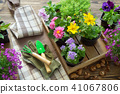 Garden flowers in flower pots. Garden equipment 41067806