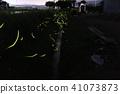 Aoishi firefly village 41073873