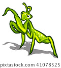 Beetle praying mantis isolated on a white background. Vector illustration. 41078525