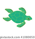 turtle on a white background 41080650