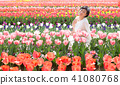 tulipa bloom blossom 41080768
