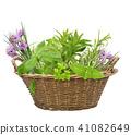 Fresh herbs in a basket 41082649