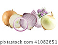 onions isolated on white 41082651