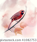 Male Northern Cardinal watercolor 41082753