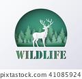 World Wildlife Day 41085924