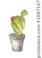 Ladybug with Cactus in pot 41087547