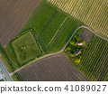 aerial view agriculture field summer day 41089027