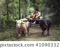 Thailand The couple ancient in countryside  41090332