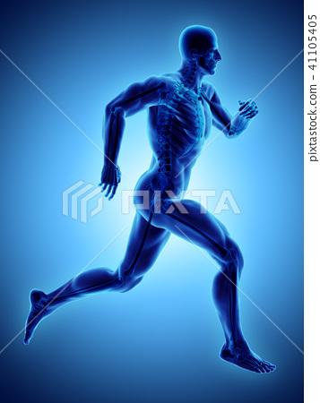 3d illustration male running x-ray skeleton. 41105405