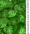 seamless background of tropical leaves 41105603