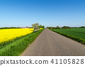 Road through a beautiful landscape by springtime 41105828