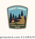 forest vector camp 41106429