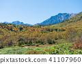 쓰가이케 자연원, 츠가이케 자연원, 단풍 41107960