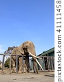 動物園 動物 藍天 41111458