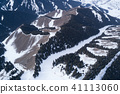 Aerial view of the Alpine mountains and forest 41113060
