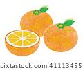 Orange 41113455