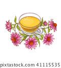 herb flower herbal 41115535