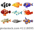 Fish cartoon set 41118095