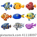 Fish cartoon set  41118097