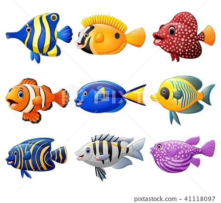 Fish cartoon set  41118097