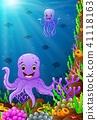 cartoon color fish 41118163