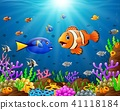Under the sea  41118184