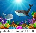 Under the sea  41118188