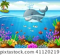 Cartoon whale under the sea  41120219