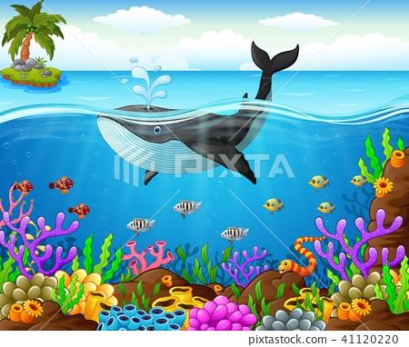 Cartoon Whale Under The Sea Stock Illustration 41120220 Pixta