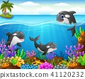 Cartoon whale under the sea  41120232
