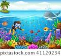 Cartoon diver under the sea  41120234
