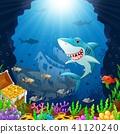 Cartoon shark under the sea  41120240