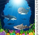 Cartoon whale under the sea  41120244