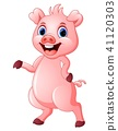 Cute pig cartoon  41120303
