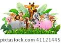 Collection animal safari in the jungle  41121445