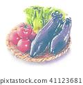 大和蔬菜水彩風格 41123681