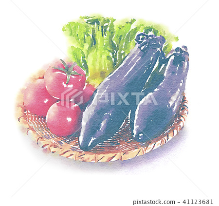 Yamato vegetables watercolor style 41123681