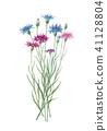 ดอกไม้,ไม้,โรงงาน 41128804